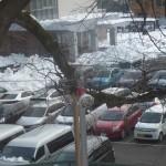 大雪の翌日合格発表