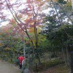 京都で私立大学連盟総会