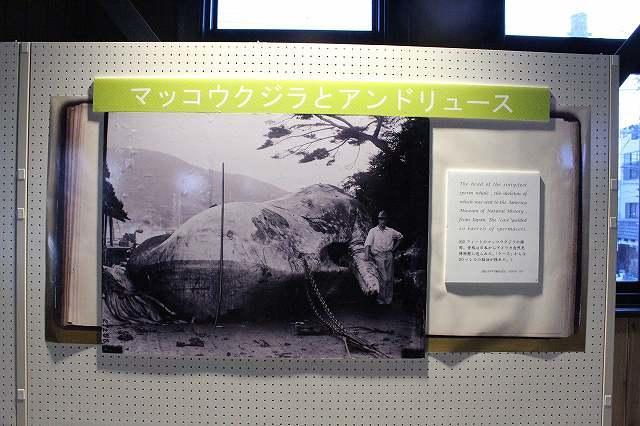 http://www.tohoku-gakuin.ac.jp/info/content/180131-2_5.jpg